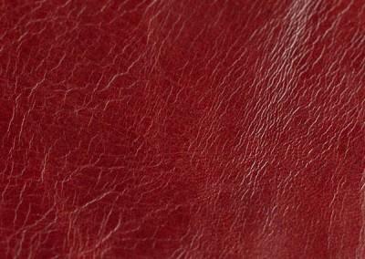 Caledonian furia red